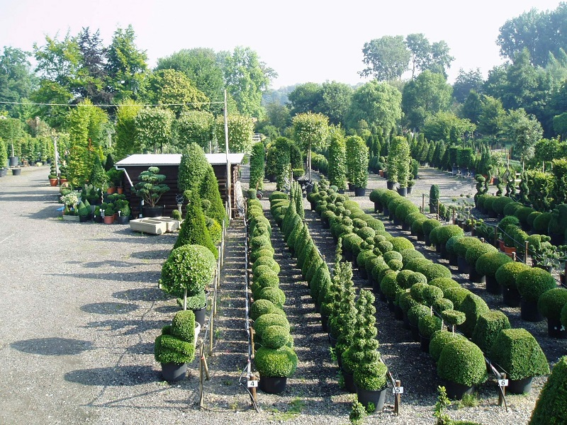 FANTASTIC FAKE TOPIARY FOR GARDEN